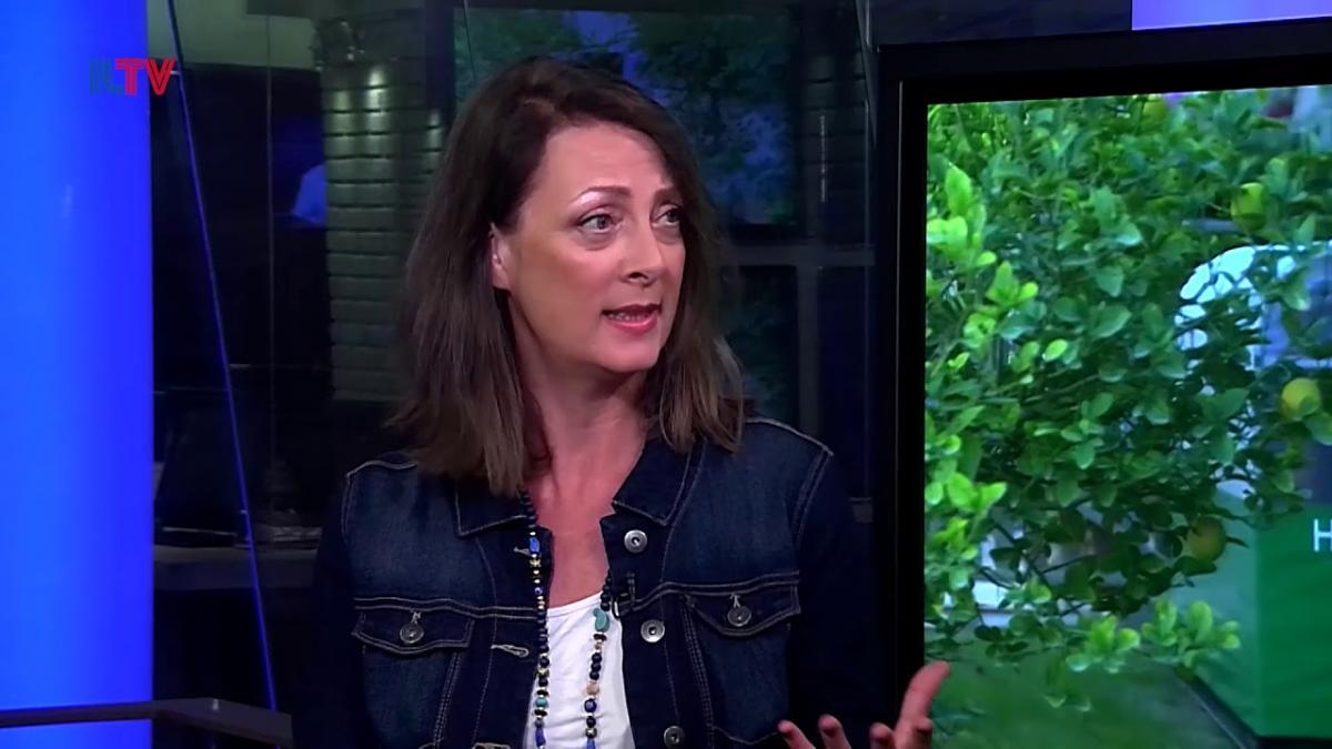 Anne Baer de la firme Ikare